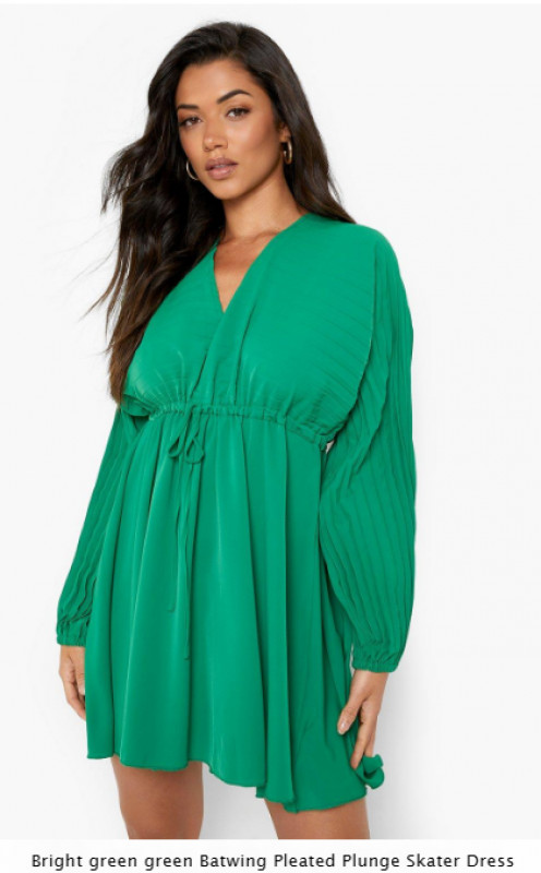 Batwing Pleated Plunge Skater Dress